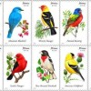 Songbird Stamps Take Flight Through the U.S. Mail