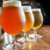Year of Beer: Craft Beer Trends in 2014