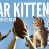 Here's a Cat 'Survival Guide' for the Big Game