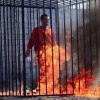 Why ISIS Terrorists Burnt Jordanian Pilot Alive