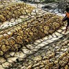 UN Warns As Global Temperatures Soar