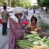 Let Us Taste Hot Maize Grains of India