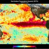 What Is the Impact of El Niño on Global Climate?