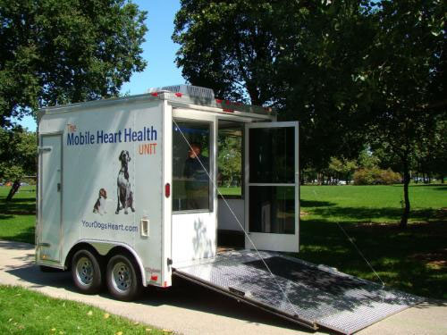 Free Dog Heart Checks at 'Bark in the Park'