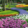 First Lady of Poland to Open Keukenhof Gardens