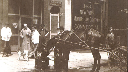Bideawee Horse and Carriage, Circa 1906