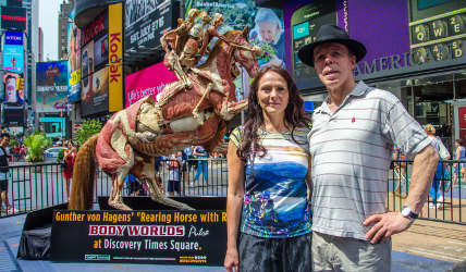 Body Worlds at Discovery Times Square