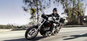 Harley-Davidson Brings Two More New Bikes