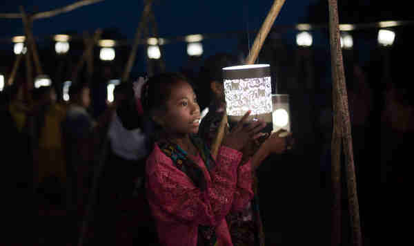 Child looking at the animal lit by the lantern's light.