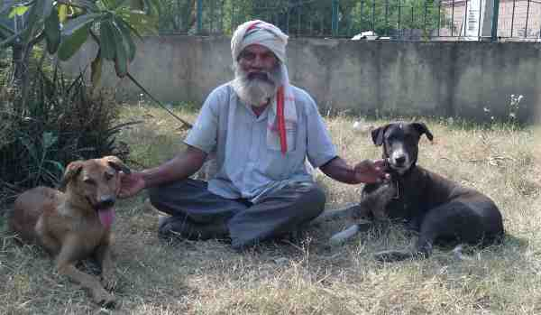Shiv Pal with his dogs