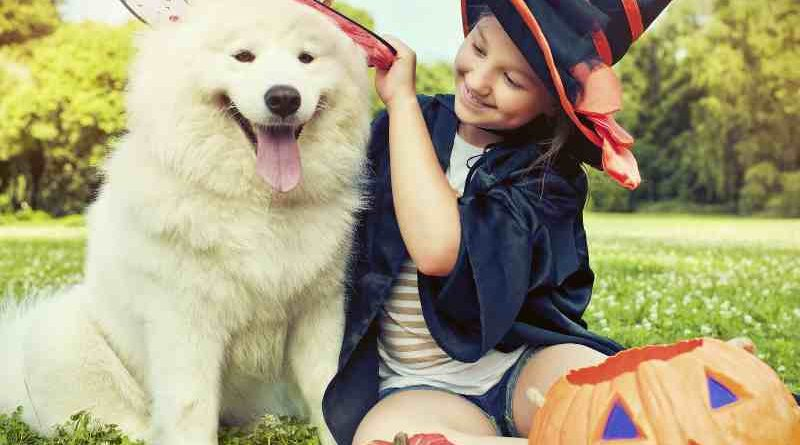 How to Protect Your Children, Property, and Pets on Halloween