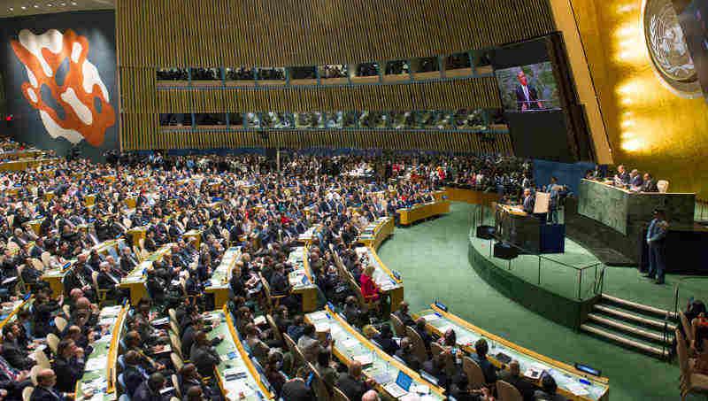 The UN General Assembly. UN Photo/Mark Garten (file)