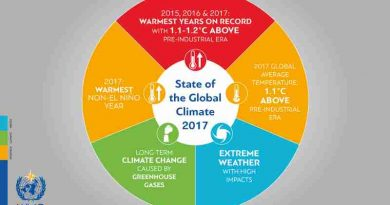 The World Meteorological Organization (WMO) confirmed that 2017 was among the three warmest years on record.