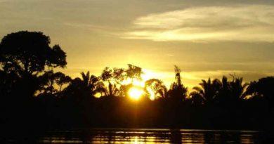 Aruanas TV Series Pleads to Protect Amazon Rainforest