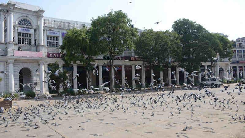 A scene in Delhi as people observed Janata Curfew announced by PM Narendra Modi on March 22, 2020 to combat Coronavirus. Photo: PIB