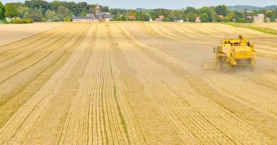 Harvest of the barley - Combine harvester. Photo: European Parliament