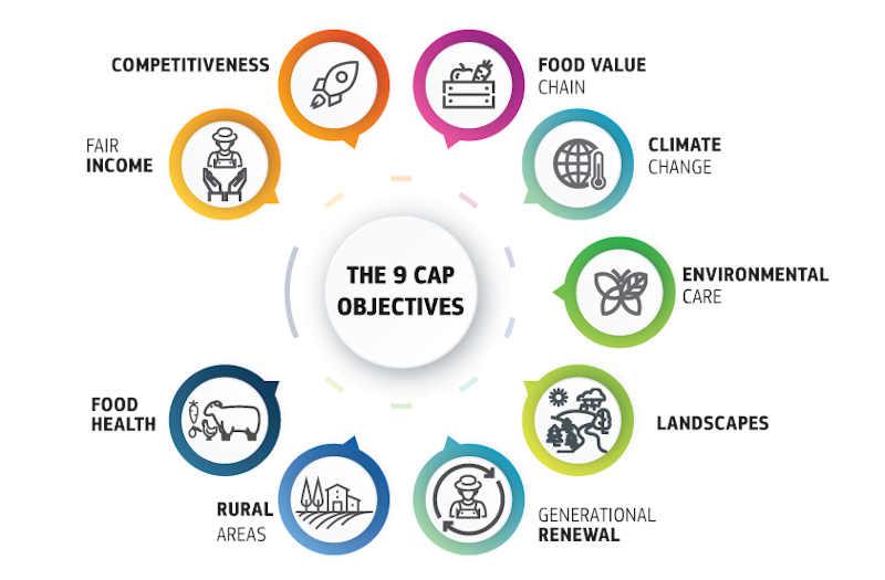 CAP Objectives