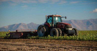 Photo: USDA