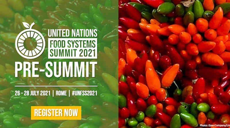 Pre-Summit of the UN Food Systems Summit. Photo: UN