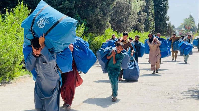IOM is expanding its relief operations across Afghanistan in response to mounting humanitarian needs fuelled by drought and conflict. Photo: IOM (Representational Image)