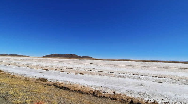 There are more than 833 million hectares of salt-affected soils around the globe. Photo: FAO