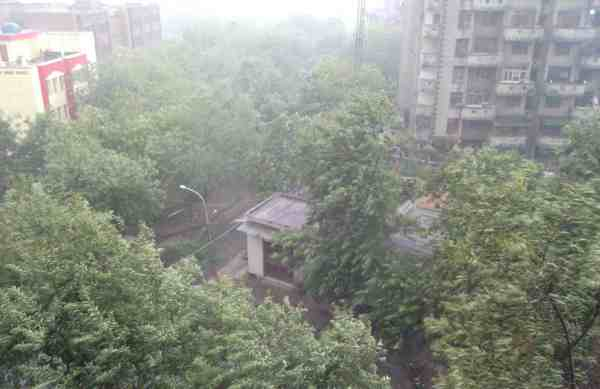 Mango Showers in New Delhi