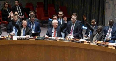 The Security Council unanimously adopts resolution 2336 (2016) on 31 December in support of Russia-Turkey efforts to end violence in Syria. UN Photo / Manuel Elias