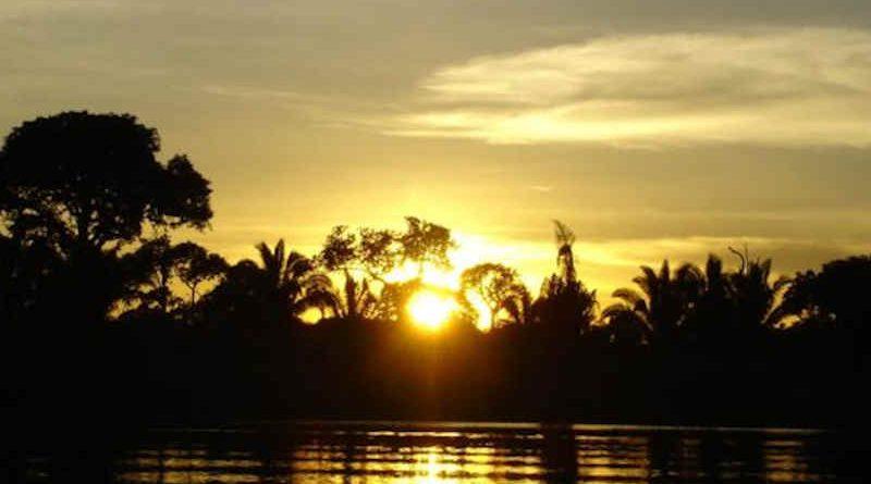 Aruanas TV Series Pleads to Protect Amazon Rainforest. Photo: UN Environment
