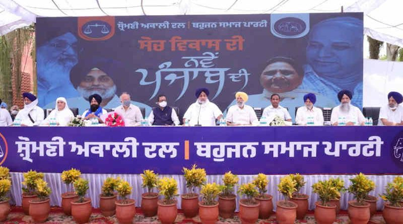 Announcement of the Punjab election alliance between the Shiromani Akali Dal (SAD) and the Bahujan Samaj Party (BSP) on June 12, 2021. Photo: SAD